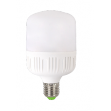 Bec LED 40W E40 6500K